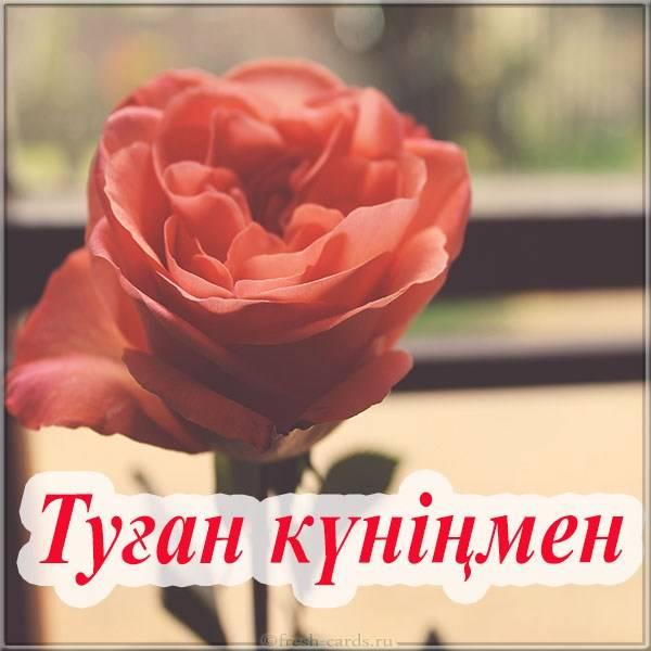 Открытка с днем рождения на Казахском языке