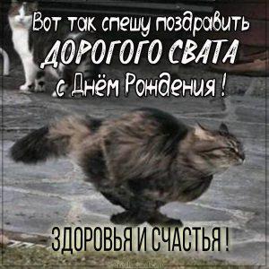Картинка с днем рождения для свата с котом