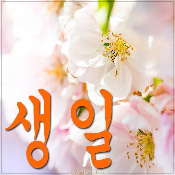 Красивая открытка с днем рождения на Корейском языке
