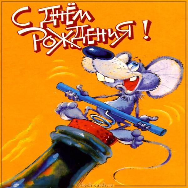 Прикольная открытка на день рождения с крыской