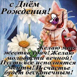 Прикольная открытка на день рождения от кота