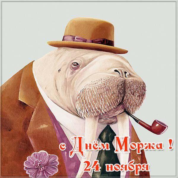 Прикольная открытка с днем моржа