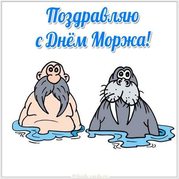 Смешная картинка поздравляю с днем моржа
