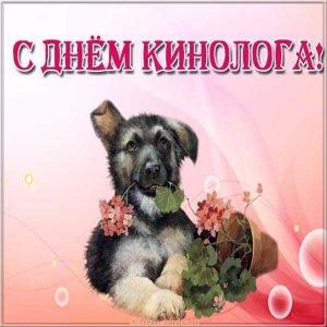 Красивая открытка с днем кинолога с щенком