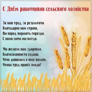 Открытка поздравление с днём работников сельского хозяйства
