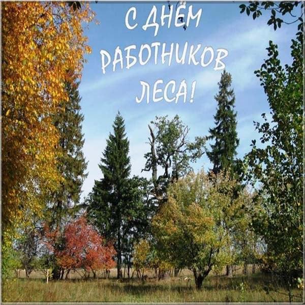 Картинка поздравляем с днём работников леса