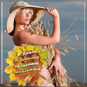 Классная открытка на день работников сельского хозяйства