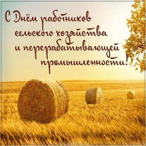 Картинка на день сельского хозяйства и перерабатывающей промышленности