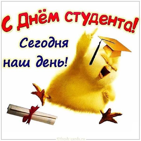 Смешная открытка с поздравлением ко дню студента