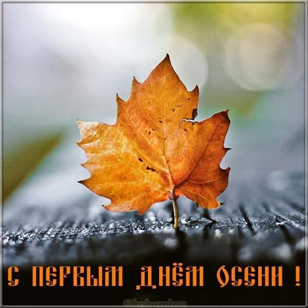 Картинка поздравление с первым днём осени