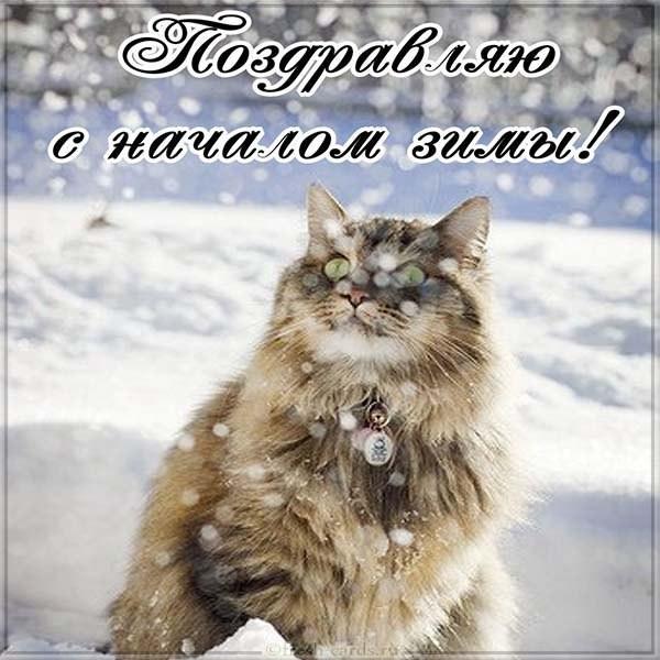 Бесплатная открытка поздравляю с началом зимы