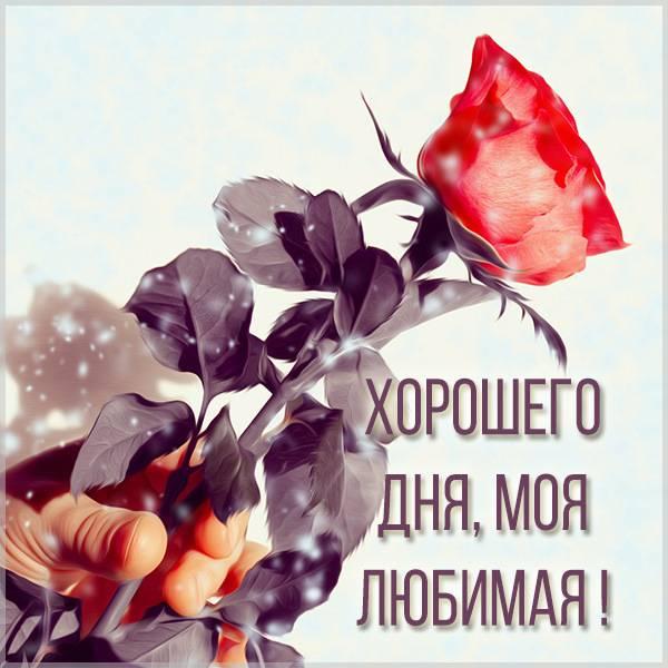 Бесплатная электронная картинка хорошего дня любимая - скачать бесплатно на otkrytkivsem.ru