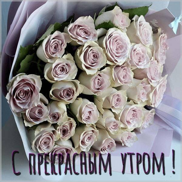 Бесплатная электронная картинка с прекрасным утром - скачать бесплатно на otkrytkivsem.ru