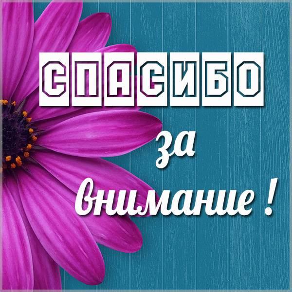 Бесплатная электронная картинка спасибо за внимание - скачать бесплатно на otkrytkivsem.ru