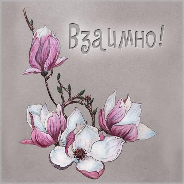 Бесплатная электронная картинка взаимно - скачать бесплатно на otkrytkivsem.ru