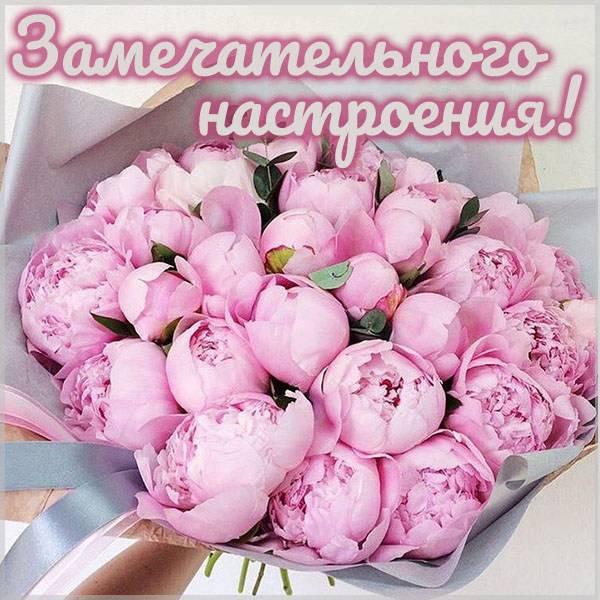 Бесплатная электронная картинка замечательного настроения - скачать бесплатно на otkrytkivsem.ru