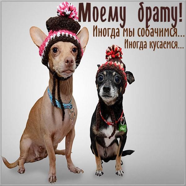 Бесплатная электронная открытка брату - скачать бесплатно на otkrytkivsem.ru