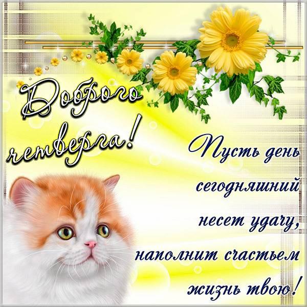 Бесплатная электронная открытка доброго четверга - скачать бесплатно на otkrytkivsem.ru