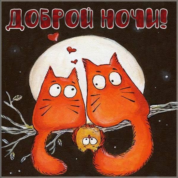Бесплатная электронная открытка доброй ночи - скачать бесплатно на otkrytkivsem.ru