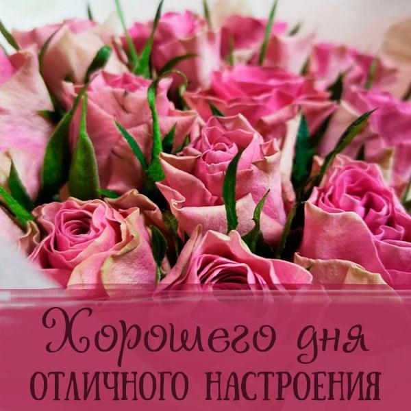 Бесплатная электронная открытка хорошего дня отличного настроения - скачать бесплатно на otkrytkivsem.ru