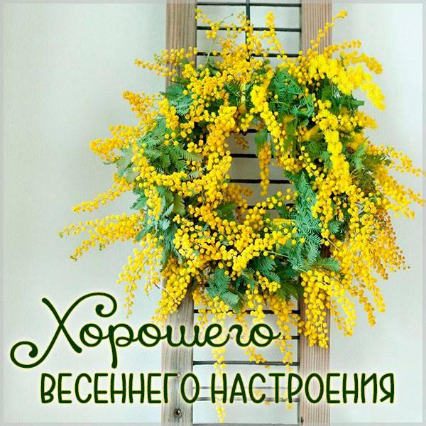 Бесплатная электронная открытка хорошего весеннего настроения - скачать бесплатно на otkrytkivsem.ru