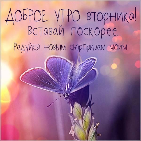 Бесплатная электронная открытка с добрым утром вторника - скачать бесплатно на otkrytkivsem.ru