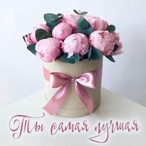 Бесплатная электронная открытка ты самая лучшая - скачать бесплатно на otkrytkivsem.ru