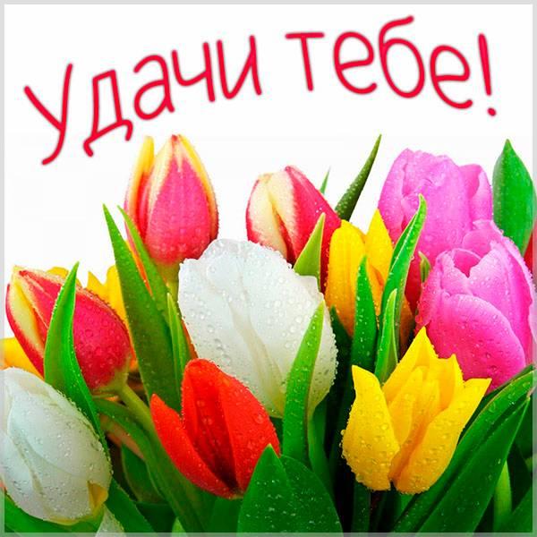 Бесплатная электронная открытка удачи - скачать бесплатно на otkrytkivsem.ru