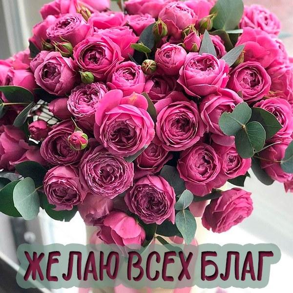 Бесплатная электронная открытка всех благ - скачать бесплатно на otkrytkivsem.ru