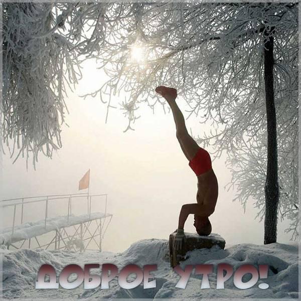 Бесплатная картинка доброе утро с приколом - скачать бесплатно на otkrytkivsem.ru