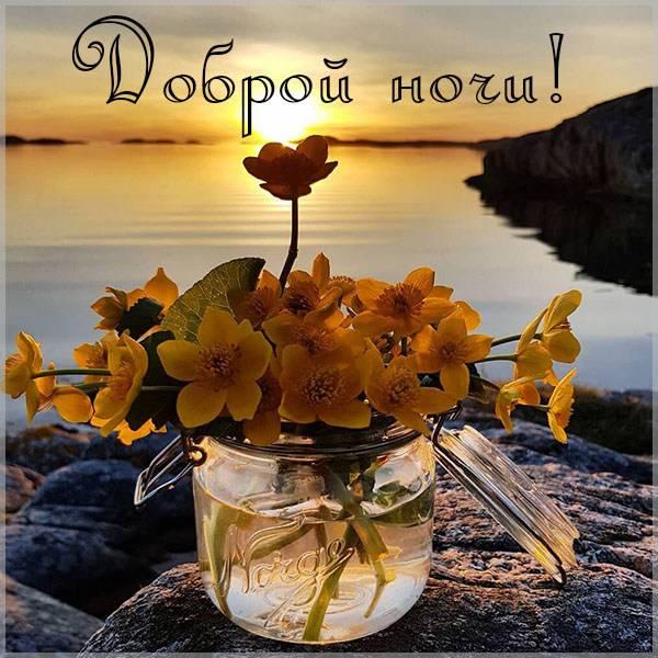 Бесплатная картинка доброй ночи красивая необычная - скачать бесплатно на otkrytkivsem.ru
