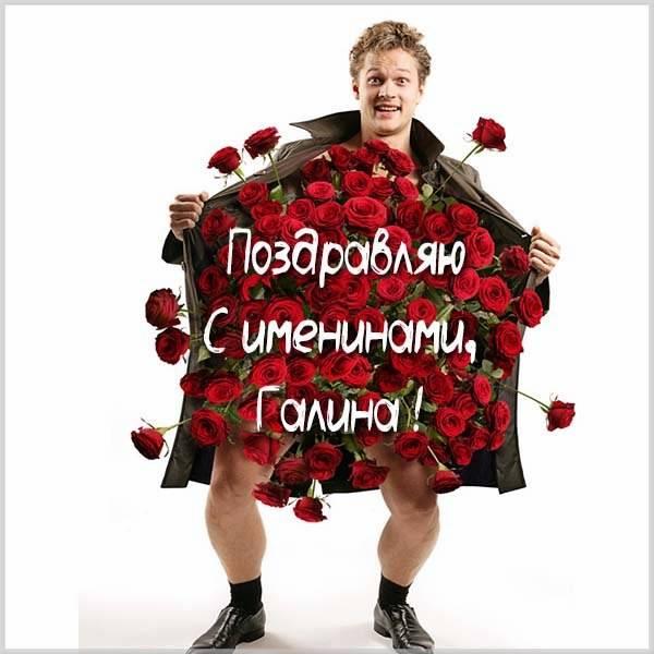 Бесплатная картинка на именины Галины - скачать бесплатно на otkrytkivsem.ru