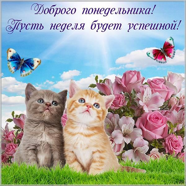 Бесплатная картинка с добрым понедельником - скачать бесплатно на otkrytkivsem.ru