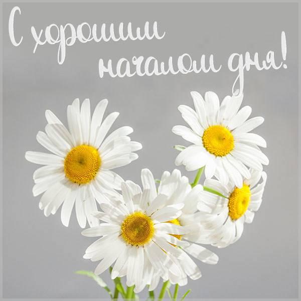 Бесплатная картинка с хорошим началом дня - скачать бесплатно на otkrytkivsem.ru