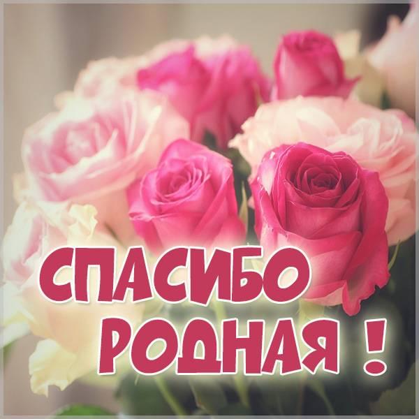 Бесплатная картинка спасибо родная - скачать бесплатно на otkrytkivsem.ru