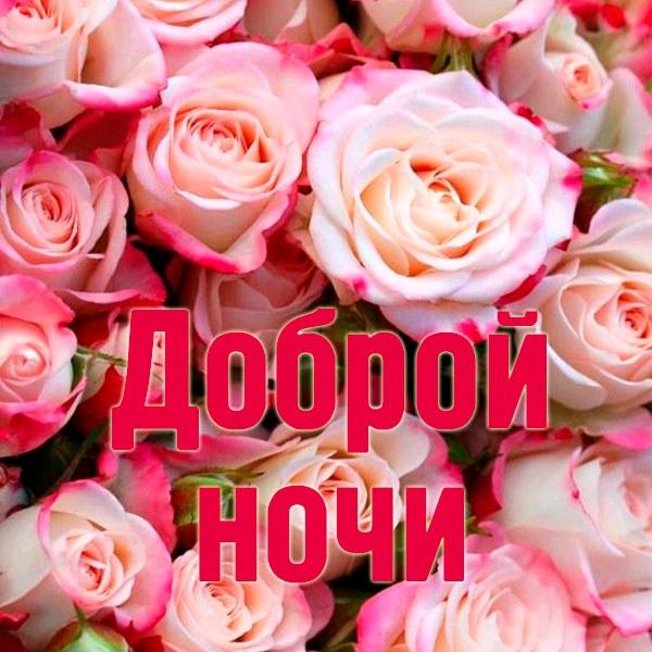 Бесплатная открытка доброй ночи с цветами - скачать бесплатно на otkrytkivsem.ru