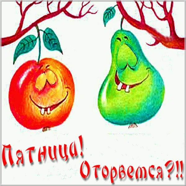 Бесплатная открытка друзьям на пятницу с юмором - скачать бесплатно на otkrytkivsem.ru