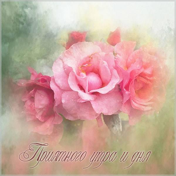 Бесплатная открытка приятного утра и дня - скачать бесплатно на otkrytkivsem.ru
