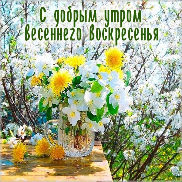 Бесплатная открытка с добрым утром весеннего воскресенья - скачать бесплатно на otkrytkivsem.ru