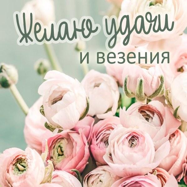Бесплатная открытка с пожеланием удачи и везения - скачать бесплатно на otkrytkivsem.ru