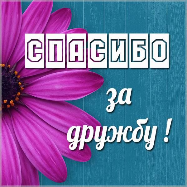 Бесплатная открытка спасибо за дружбу - скачать бесплатно на otkrytkivsem.ru