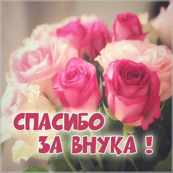 Бесплатная открытка спасибо за внука - скачать бесплатно на otkrytkivsem.ru