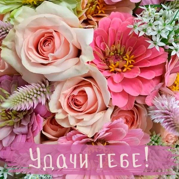 Бесплатная открытка удачи тебе - скачать бесплатно на otkrytkivsem.ru