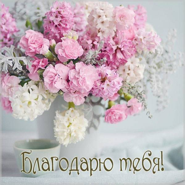 Бесплатная виртуальная картинка благодарю тебя - скачать бесплатно на otkrytkivsem.ru
