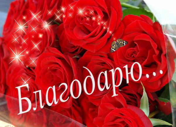 Благодарю в картинках - скачать бесплатно на otkrytkivsem.ru