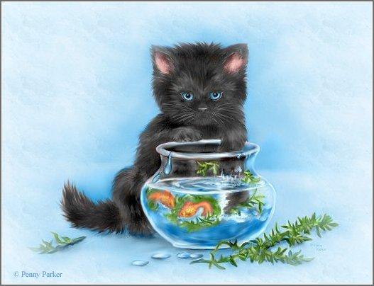 Чёрная кошка - скачать бесплатно на otkrytkivsem.ru