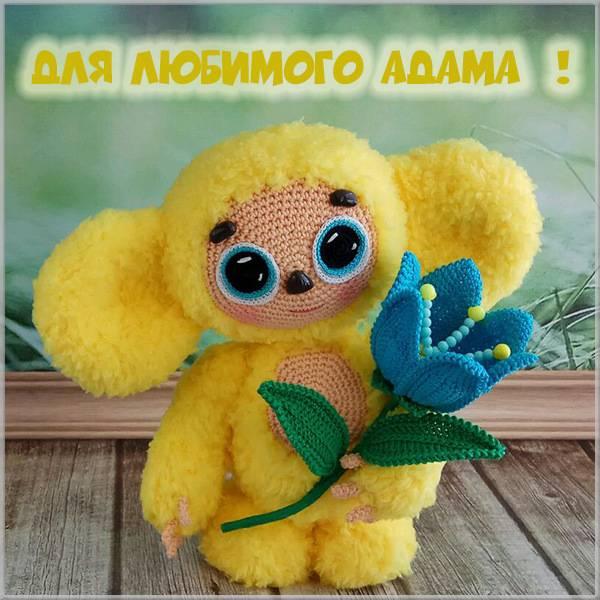 Детская картинка с именем Адам - скачать бесплатно на otkrytkivsem.ru
