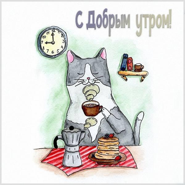 Душевная и прикольная картинка с добрым утром - скачать бесплатно на otkrytkivsem.ru