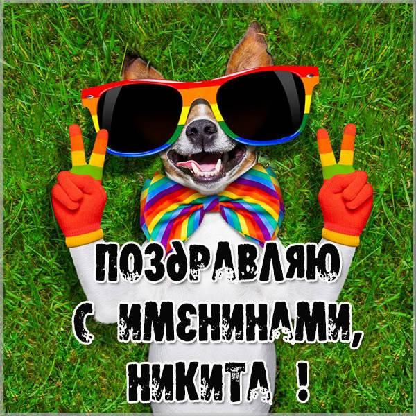 Электронная открытка на именины Никиты - скачать бесплатно на otkrytkivsem.ru