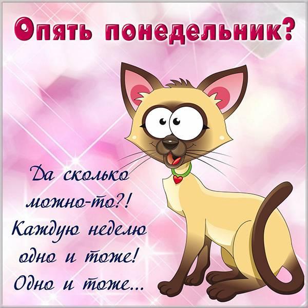 Электронная открытка опять понедельник - скачать бесплатно на otkrytkivsem.ru
